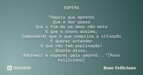 """ESPERA """"Depois que aprendi Que a dor passa Que o fim de um amor não mata E que o choro acalma, Compreendi que o que complica a situação É querer entender O... Frase de Rose Felliciano."""