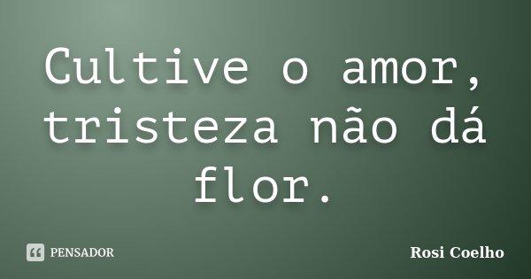 Cultive O Amor Tristeza Não Dá Flor Rosi Coelho