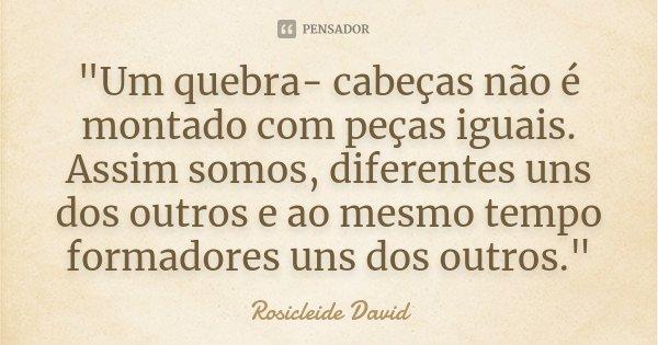 """""""Um quebra- cabeças não é montado com peças iguais. Assim somos, diferentes uns dos outros e ao mesmo tempo formadores uns dos outros.""""... Frase de Rosicleide David."""