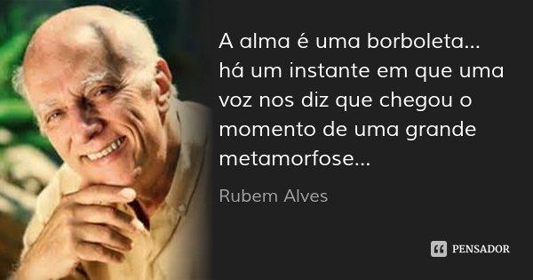 A alma é uma borboleta... há um instante em que uma voz nos diz que chegou o momento de uma grande metamorfose...... Frase de Rubem Alves.