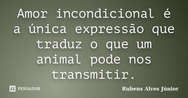 Amor incondicional é a única expressão que traduz o que um animal pode nos transmitir.... Frase de Rubens Alves Júnior.