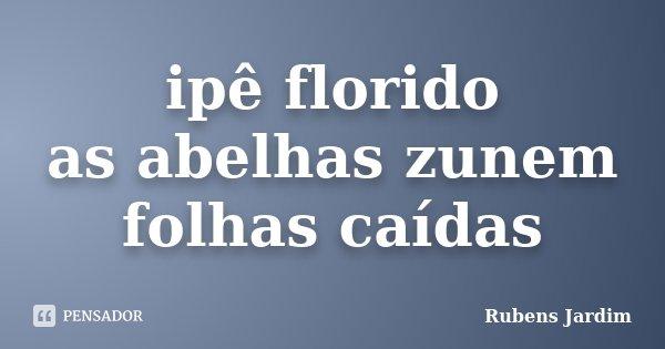 ipê florido as abelhas zunem folhas caídas... Frase de Rubens Jardim.