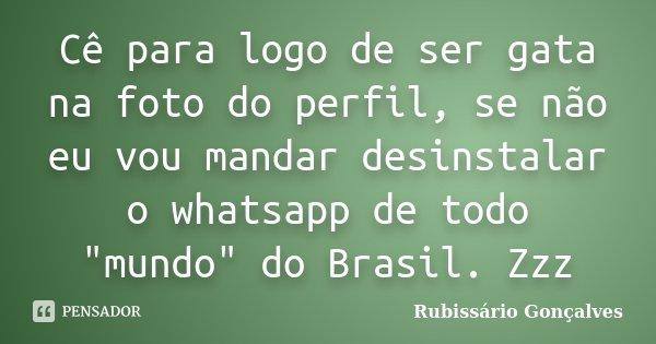"""Cê para logo de ser gata na foto do perfil, se não eu vou mandar desinstalar o whatsapp de todo """"mundo"""" do Brasil. Zzz... Frase de Rubissário Gonçalves."""