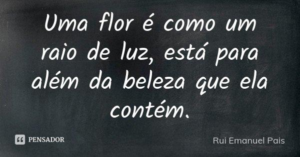 Uma flor é como um raio de luz, está para além da beleza que ela contém. Rui Pais... Frase de Rui Emanuel Pais.
