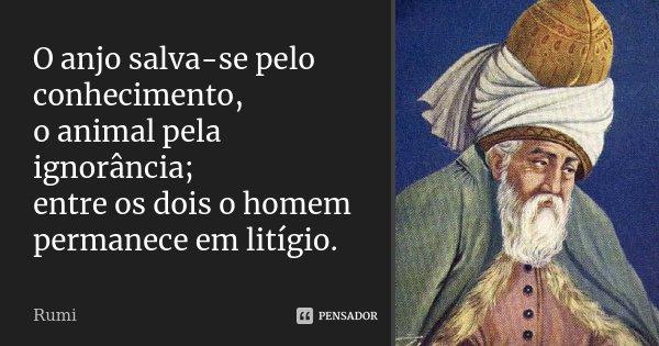 O anjo salva-se pelo conhecimento, o animal pela ignorância; entre os dois o homem permanece em litígio.... Frase de Rumi.