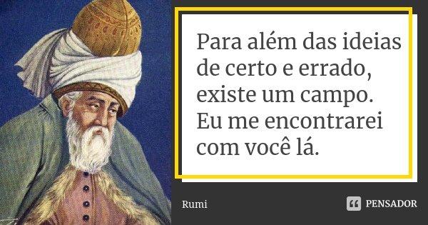 Frases Sobre Certo E Errado: Rumi: Para Além Das Ideias De Certo E Errado