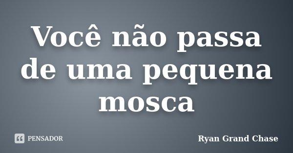 Você não passa de uma pequena mosca... Frase de Ryan Grand Chase.
