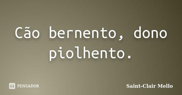 Cão bernento, dono piolhento.... Frase de Saint-Clair Mello.