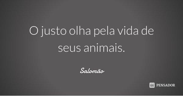 O justo olha pela vida de seus animais.... Frase de Salomão.