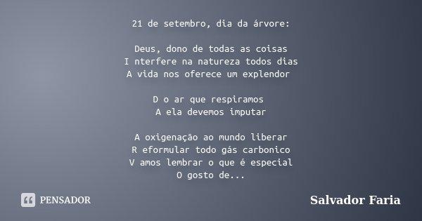 21 De Setembro Dia Da árvore Deus Salvador Faria
