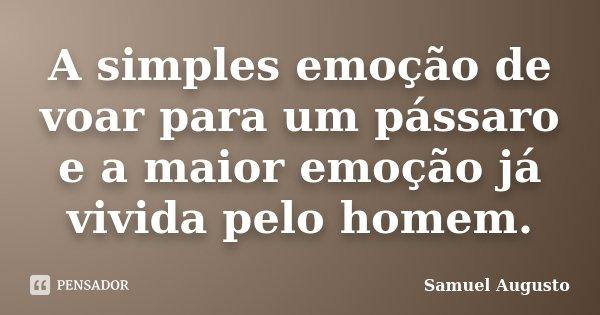 A simples emoção de voar para um pássaro e a maior emoção já vivida pelo homem.... Frase de Samuel Augusto.