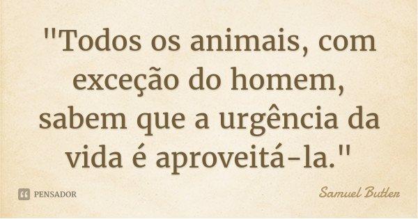 """""""Todos os animais, com exceção do homem, sabem que a urgência da vida é aproveitá-la.""""... Frase de Samuel Butler."""