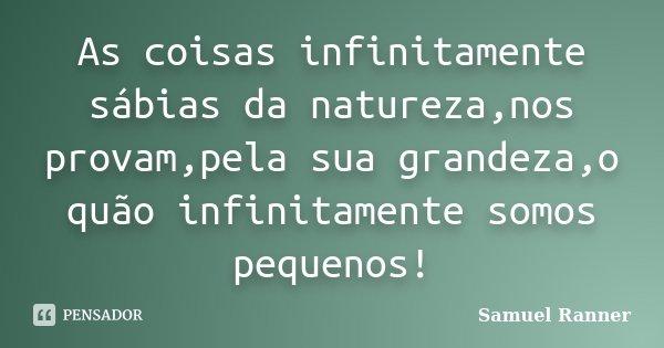 As coisas infinitamente sábias da natureza,nos provam,pela sua grandeza,o quão infinitamente somos pequenos!... Frase de Samuel Ranner.