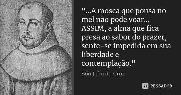 """""""...A mosca que pousa no mel não pode voar... ASSIM, a alma que fica presa ao sabor do prazer, sente-se impedida em sua liberdade e contemplação.""""... Frase de São João da Cruz."""