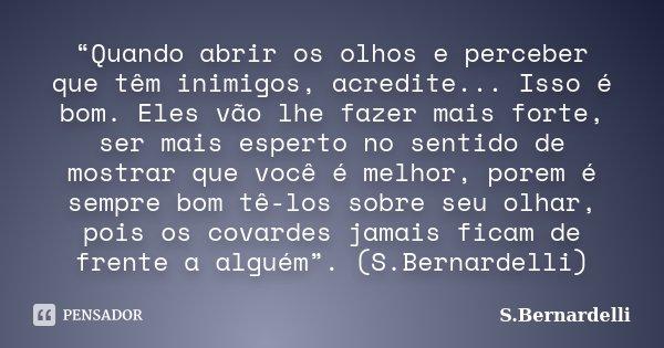 """""""Quando abrir os olhos e perceber que têm inimigos, acredite... Isso é bom. Eles vão lhe fazer mais forte, ser mais esperto no sentido de mostrar que você é mel... Frase de S.Bernardelli."""