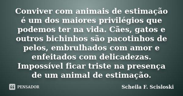 Conviver com animais de estimação é um dos maiores privilégios que podemos ter na vida. Cães, gatos e outros bichinhos são pacotinhos de pelos, embrulhados com ... Frase de Scheila F. Scisloski.