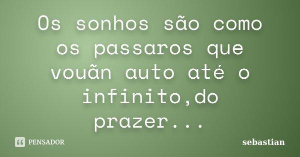 Os sonhos são como os passaros que vouãn auto até o infinito,do prazer...... Frase de sebastian.