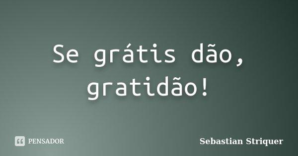 Se grátis dão, gratidão!... Frase de Sebastian Striquer.