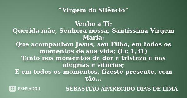 """""""Virgem do Silêncio"""" Venho a Ti; Querida mãe, Senhora nossa, Santíssima Virgem Maria; Que acompanhou Jesus, seu Filho, em todos os momentos de sua vida; (Lc 1,3... Frase de SEBASTIAO APARECIDO DIAS DE LIMA."""