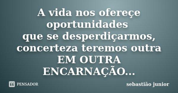 A vida nos ofereçe oportunidades que se desperdiçarmos, concerteza teremos outra EM OUTRA ENCARNAÇÃO...... Frase de sebastião junior.