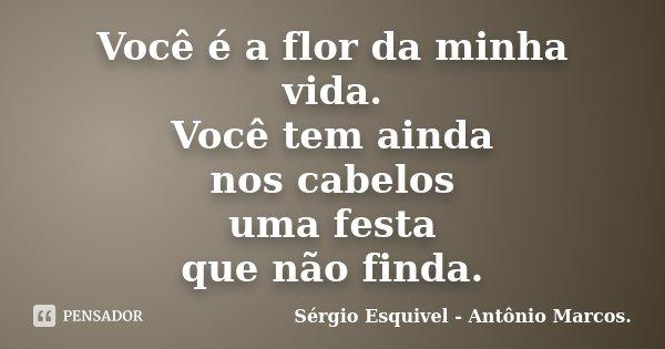 Você é a flor da minha vida. Você tem ainda nos cabelos uma festa que não finda.... Frase de Sérgio Esquivel - Antônio Marcos..
