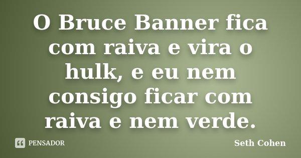 O Bruce Banner fica com raiva e vira o hulk, e eu nem consigo ficar com raiva e nem verde.... Frase de Seth Cohen.