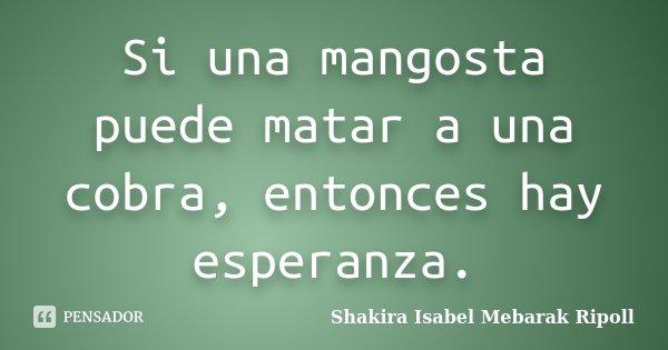 Si una mangosta puede matar a una cobra, entonces hay esperanza.... Frase de Shakira Isabel Mebarak Ripoll.