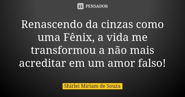 Renascendo Da Cinzas Como Uma Fênix A Shirlei Miriam De Souza