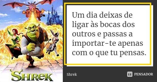 Um dia deixas de ligar às bocas dos outros e passas a importar-te apenas com o que tu pensas.... Frase de Shrek.