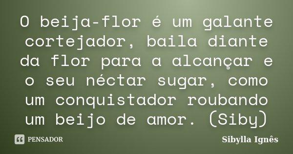 O beija-flor é um galante cortejador, baila diante da flor para a alcançar e o seu néctar sugar, como um conquistador roubando um beijo de amor. (Siby)... Frase de Sibylla Ignês.