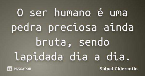 O ser humano é uma pedra preciosa ainda bruta, sendo lapidada dia a dia.... Frase de sidnei chierentin.