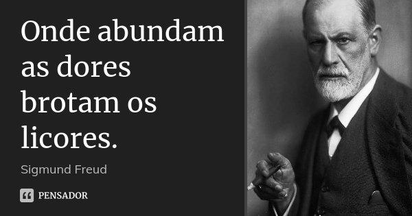 Onde abundam as dores brotam os licores.... Frase de Sigmund Freud.