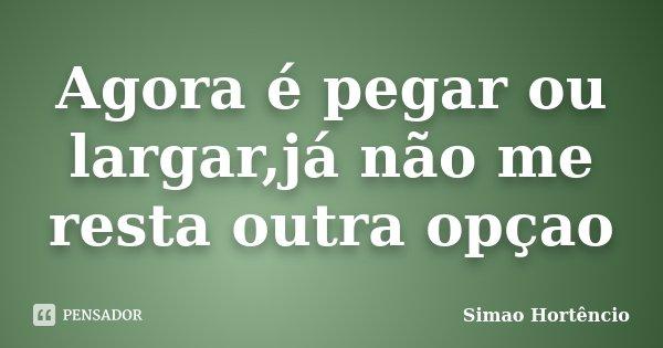 Agora é pegar ou largar,já não me resta outra opçao... Frase de Simao Hortêncio.
