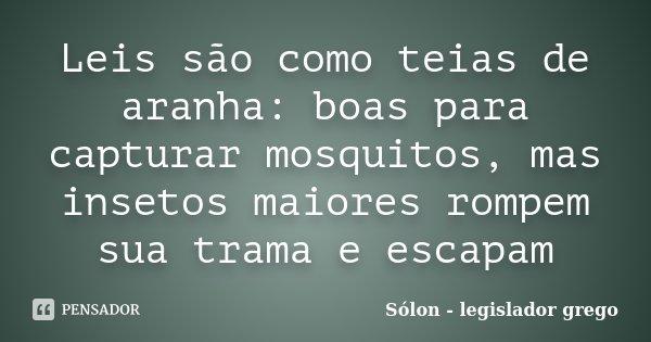 Leis são como teias de aranha: boas para capturar mosquitos, mas insetos maiores rompem sua trama e escapam... Frase de Sólon - legislador grego.