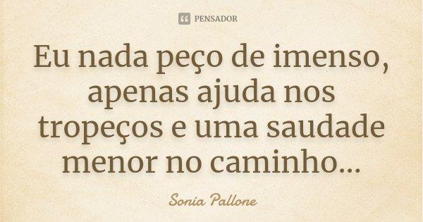 Eu nada peço de imenso, apenas ajuda nos tropeços e uma saudade menor no caminho...... Frase de Sonia Pallone.