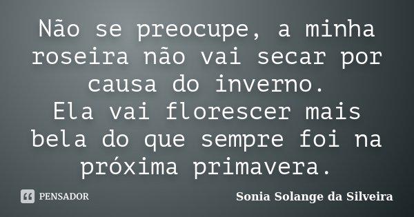 Não se preocupe, a minha roseira não vai secar por causa do inverno. Ela vai florescer mais bela do que sempre foi na próxima primavera.... Frase de Sonia Solange da Silveira.