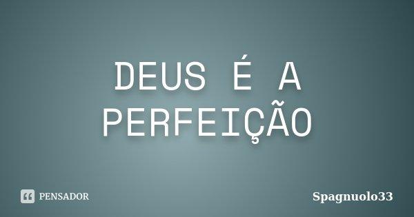 DEUS É A PERFEIÇÃO... Frase de Spagnuolo33.