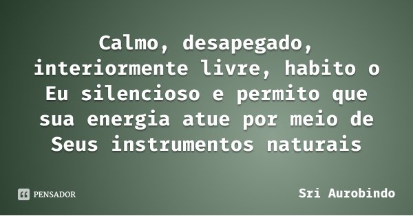 Calmo, desapegado, interiormente livre, habito o Eu silencioso e permito que sua energia atue por meio de Seus instrumentos naturais... Frase de Sri Aurobindo.
