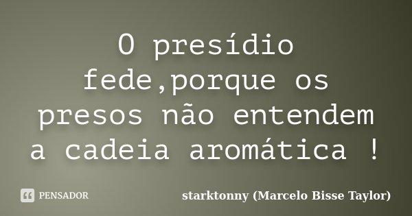 O presídio fede,porque os presos não entendem a cadeia aromática !... Frase de starktonny (Marcelo Bisse Taylor ).