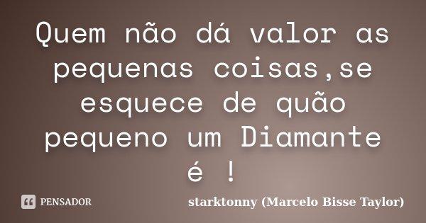 Quem não dá valor as pequenas coisas,se esquece de quão pequeno um Diamante é !... Frase de starktonny (Marcelo Bisse Taylor ).