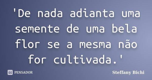 'De nada adianta uma semente de uma bela flor se a mesma não for cultivada.'... Frase de Steffany Bichi.