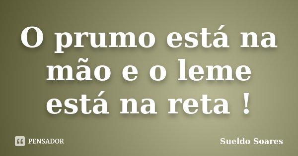 O prumo está na mão e o leme está na reta !... Frase de Sueldo Soares.