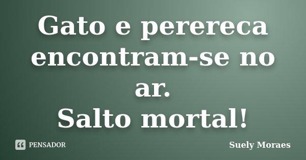 Gato e perereca encontram-se no ar. Salto mortal!... Frase de Suely Moraes.