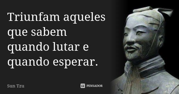 Triunfam aqueles que sabem quando lutar e quando esperar.... Frase de Sun Tzu.