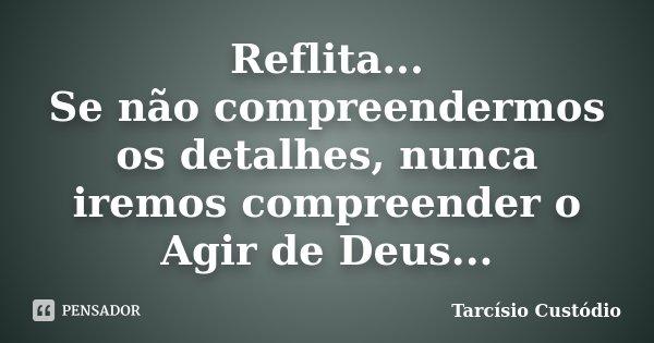 Reflita... Se não compreendermos os detalhes, nunca iremos compreender o Agir de Deus...... Frase de Tarcísio Custódio.