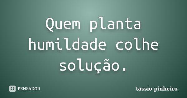 Quem planta humildade colhe solução.... Frase de Tassio pinheiro.