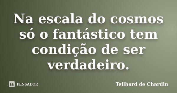 Na escala do cosmos só o fantástico tem condição de ser verdadeiro.... Frase de Teilhard de Chardin.