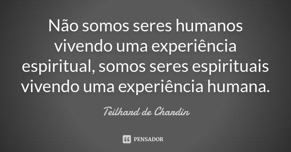Não somos seres humanos vivendo uma experiência espiritual, somos seres espirituais vivendo uma experiência humana.... Frase de Teilhard de Chardin.
