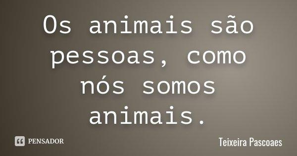 Os animais são pessoas, como nós somos animais.... Frase de Teixeira Pascoaes.