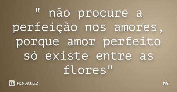 """"""" não procure a perfeição nos amores, porque amor perfeito só existe entre as flores""""... Frase de tê."""